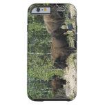 Territorios del noroeste. Nacional de madera del Funda De iPhone 6 Tough