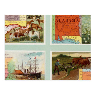 Territory of Wyoming, Alabama, Louisiana, Kansas Postcard