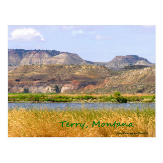 Terry Postcard
