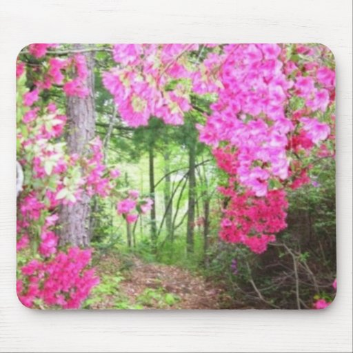 Terryls Pathway Mouse Pad