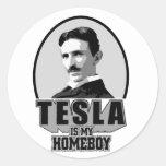 Tesla es mi Homeboy Pegatina Redonda