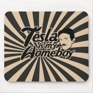 Tesla es mi Homeboy Tapetes De Raton