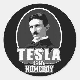 Tesla Is My Homeboy Classic Round Sticker