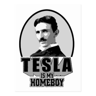 Tesla Is My Homeboy Postcard