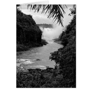 Tesoro en la selva tarjeta pequeña