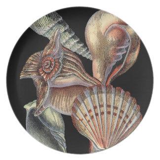 Tesoros del mar plato