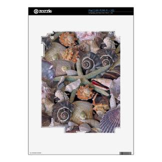 Tesoros del Seashell de las gemas del océano en Calcomanías Para iPad 2