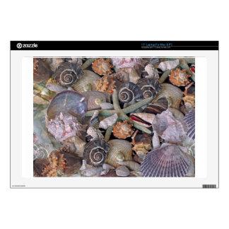 Tesoros del Seashell de las gemas del océano en Portátil Calcomanías
