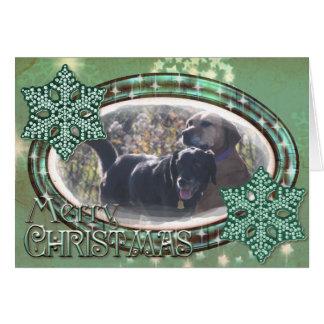 Tess - Black Labrador Priscilla Photo-1 Cards