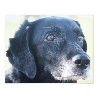"""Tess - Labrador negro Photo-3 Invitación 4.25"""" X 5.5"""""""