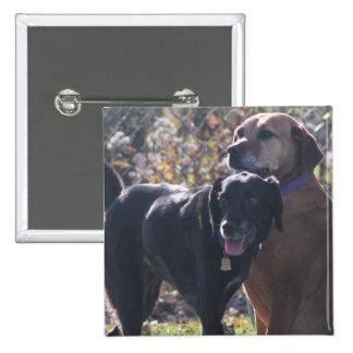 Tess - Labrador - Priscilla Photo-2 Pinback Buttons