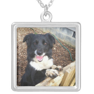 """""""Tess"""" the Border Collie~Necklace"""