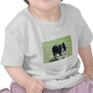 Tess T-shirts
