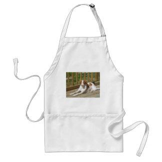 Tessa my little puppy apron