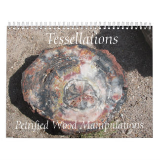 Tessellations - Petrified Wood Manipulations Calendar
