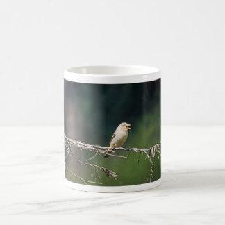 Test Bird on limb, 392 Coffee Mugs