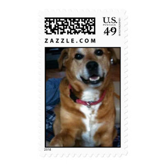 test to go into content mod postage stamp