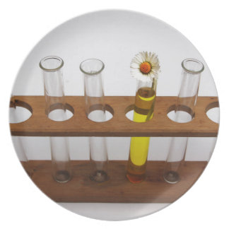 test tubes science lab equipment and flower dinner plate