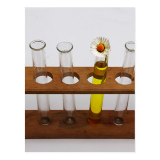 test tubes science lab equipment and flower postcard