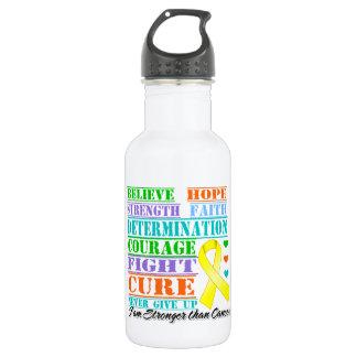 Testicular Cancer Believe Strength Determination 18oz Water Bottle