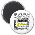 Testicular Cancer Fight Persevere Overcome Win 2 Inch Round Magnet