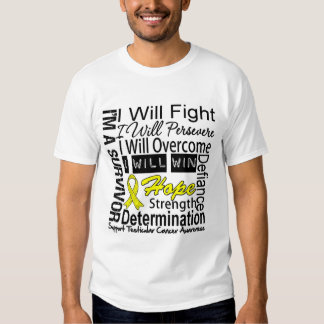 Testicular Cancer Fight Persevere Overcome Win T-Shirt