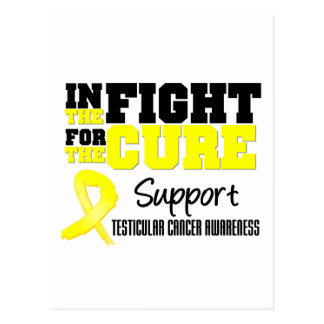 Testicular Cancer In The Fight For The Cure Postcard