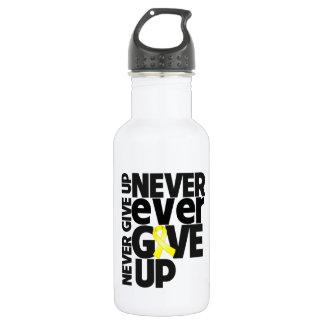 Testicular Cancer Never Ever Give Up 18oz Water Bottle