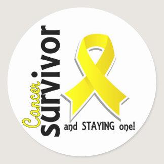 Testicular Cancer Survivor 19 Classic Round Sticker
