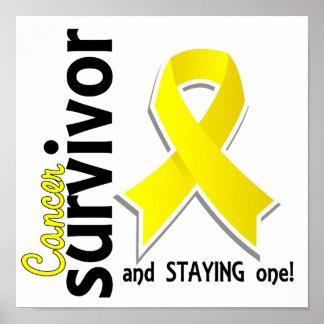 Testicular Cancer Survivor 19 Poster
