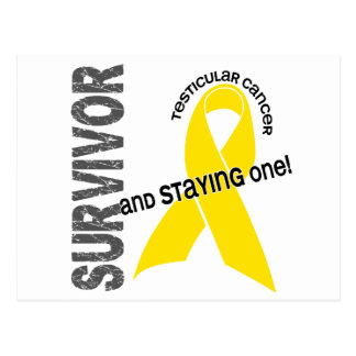 Testicular Cancer Survivor 1 Postcard