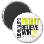 Testicular Cancer Survivor Fight Believe Win Motto Refrigerator Magnet