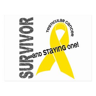 Testicular Cancer Survivor Postcard