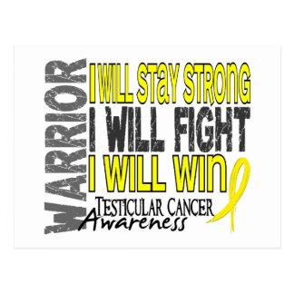 Testicular Cancer Warrior Postcard