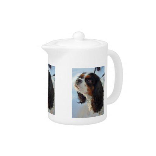 Tetera arrogante Tri Coloreada del perro de aguas