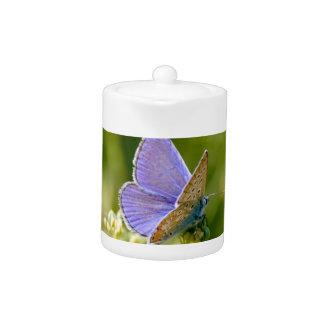 Tetera bonita de la mariposa