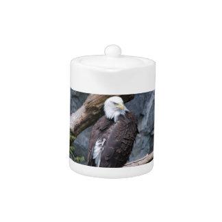 Tetera de Eagle Screach