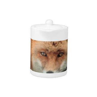 Tetera de la especie del Fox