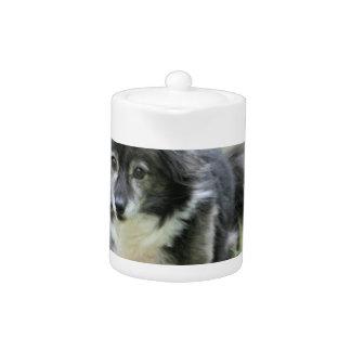 Tetera de la imagen del perro de Sheltie