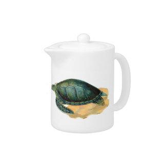 Tetera de la tortuga de mar verde