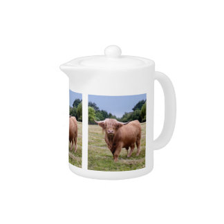 Tetera de la vaca de la montaña