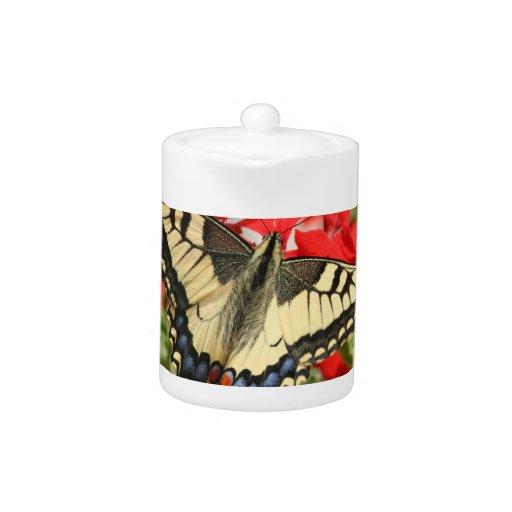 Tetera de Swallowtail del anís