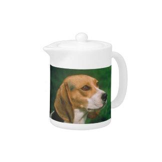Tetera del beagle