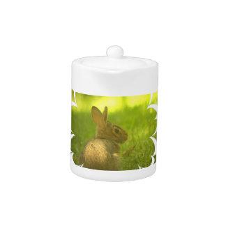 Tetera del conejo de conejito