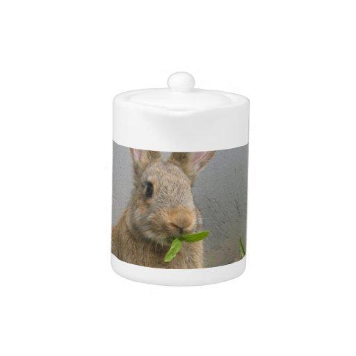 Tetera del conejo de conejo de rabo blanco