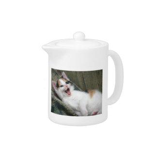 Tetera del gato del gatito del calicó