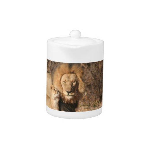 Tetera del león y de Cub de león