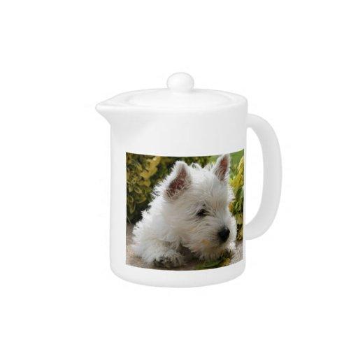 Tetera del perrito de Terrier blanco de montaña de
