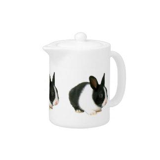 Tetera enana holandesa blanco y negro del conejo d