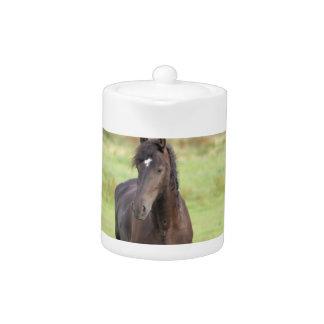 Tetera frisia dulce del caballo